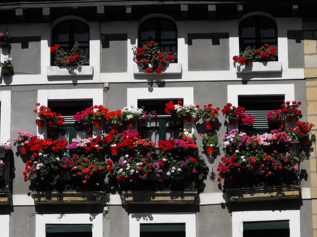 Osłony balkonowe – ich formy i zastosowanie