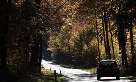 Przygotuj swój samochód do jesieni