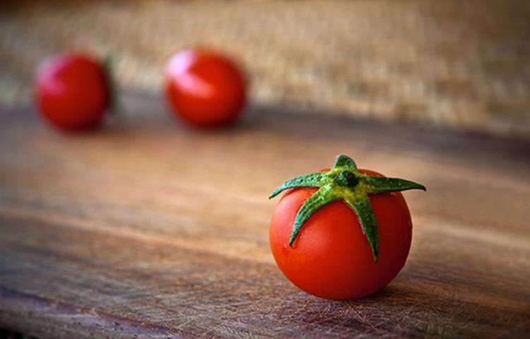 Jak należy uprawiać pomidory?