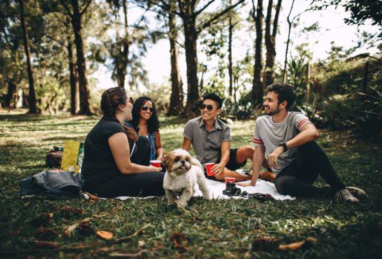 Piknik za miastem – dowiedz się co zabrać ze sobą